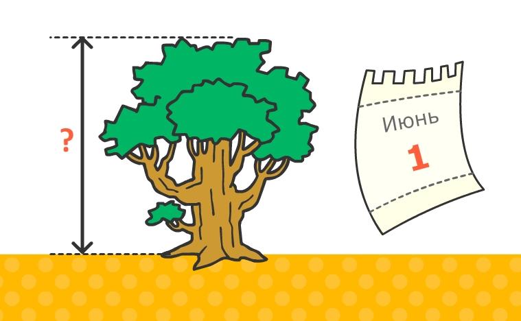 задание по математике для дошкольников 6-7 лет