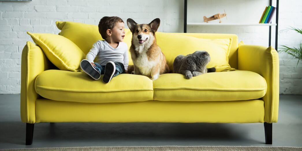 Лучшие домашние животные для детей