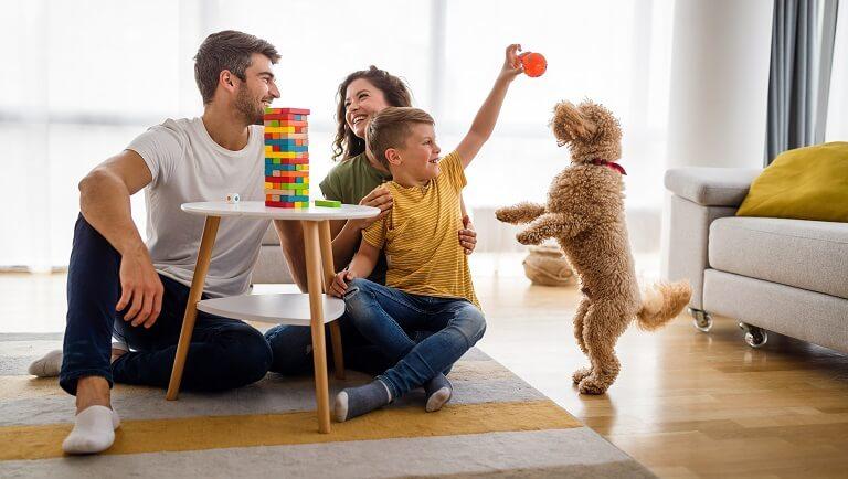 родители и ребенок дрессируют собаку