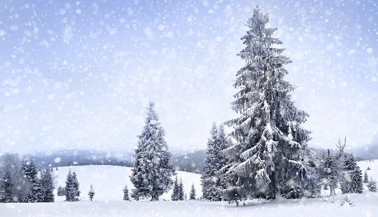 природное явление снег
