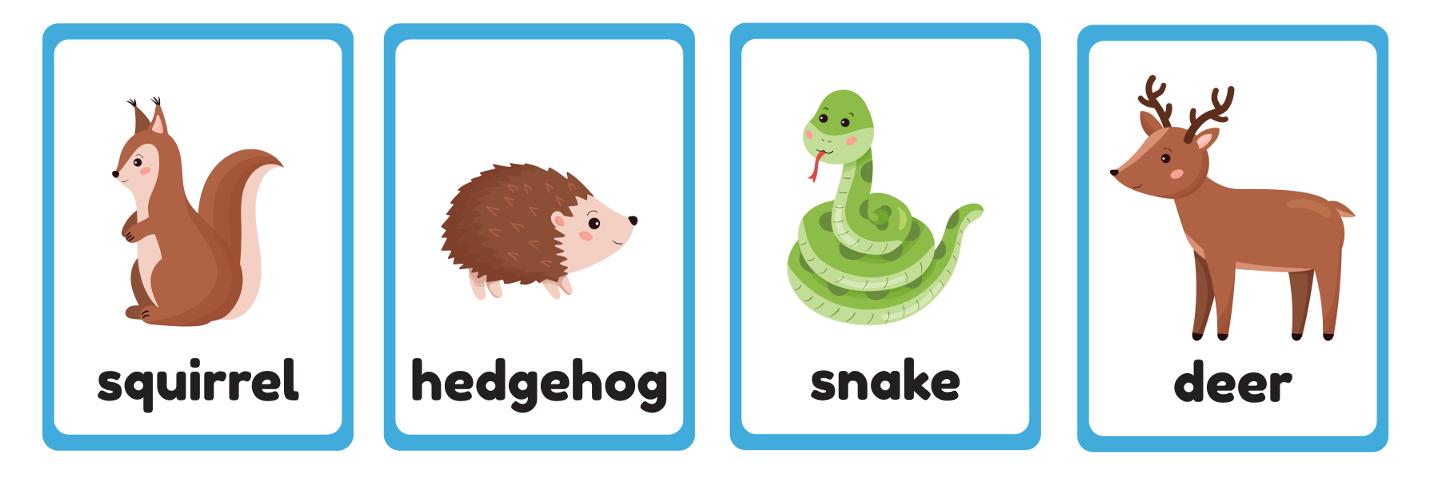 английские слова на тему животные