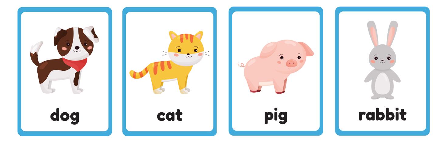 домашние животные на английском языке