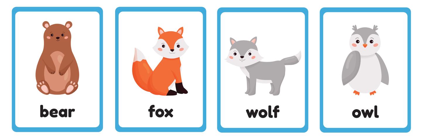 лесные животные на английском